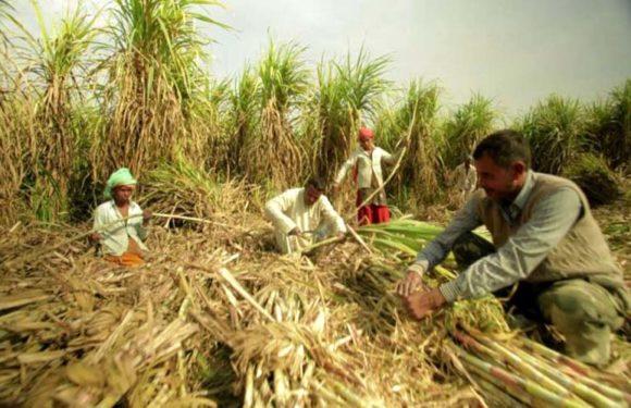 किसान जब अपने खेतों में काम करता है तो वह न हिन्दू होता है न मुसलमान