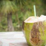 नारियल