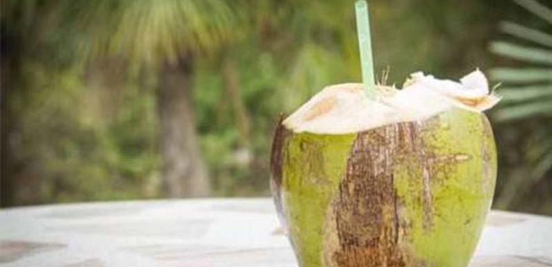 नारियल पानी पीने से होते हैं ये 8 फायदे जानकर हैरान होंगे आप