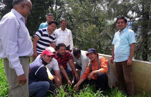 हरेला पर शिक्षक संघ ने किया वृक्षारोपण, जानिए क्यों मनाया जाता है हरेला
