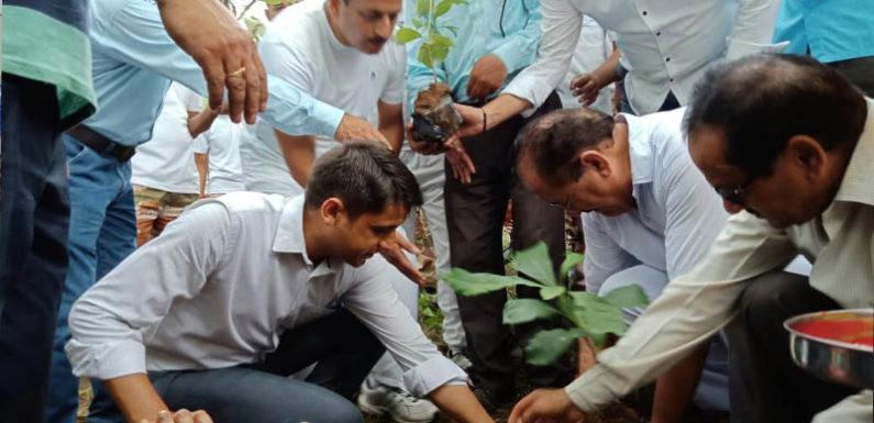 बंजर भूमि पर वृक्षारोपण कर रोजगार सृजन का दिया सन्देश