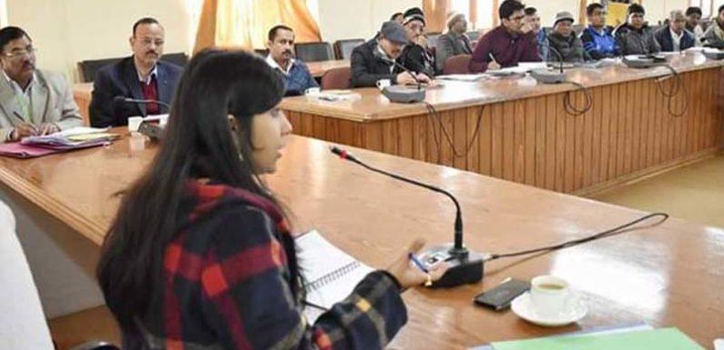 स्वाति एस भदौरिया ने वाॅल पेंन्टिग कार्यो को 26 जनवरी तक पूरा कराने के दिए निर्देश