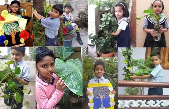 सी.एम.एस. के विभिन्न कैम्पस में  आॅनलाइन मनाया गया 'विश्व पर्यावरण दिवस'