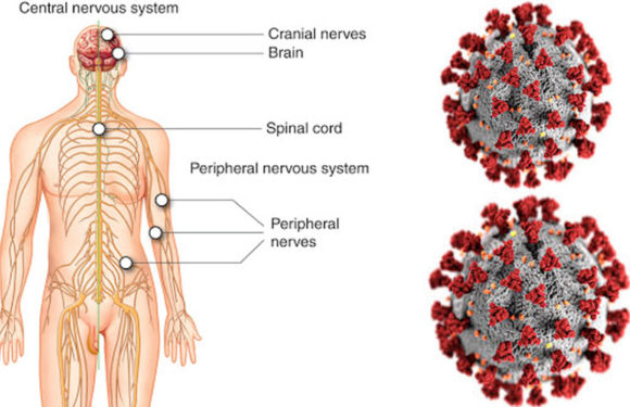 आखिर क्या है हाइपोक्सिया? कोरोना से हो रही मौत के पीछे के कारण हाइपोक्सिया