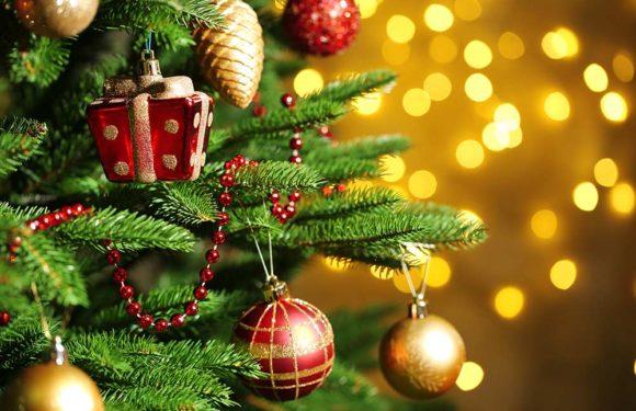 Christmas 2020 : आखिर कबसे शुरू हुआ क्रिसमस ट्री का प्रचलन