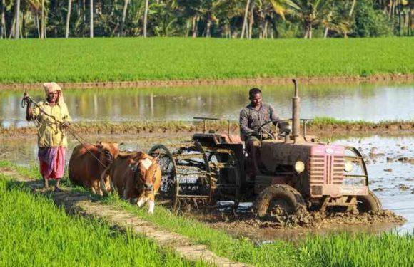 Farmers Day 2020 : सिद्धार्थनगर में किसान सम्मान एवं गोष्ठी का आयोजन, किसानों को किया सम्मानित