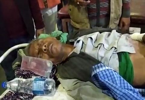 सिद्धार्थनगर : जंगली सुअर के हमले में एक बुजुर्ग व्यक्ति गंभीर रूप से घायल
