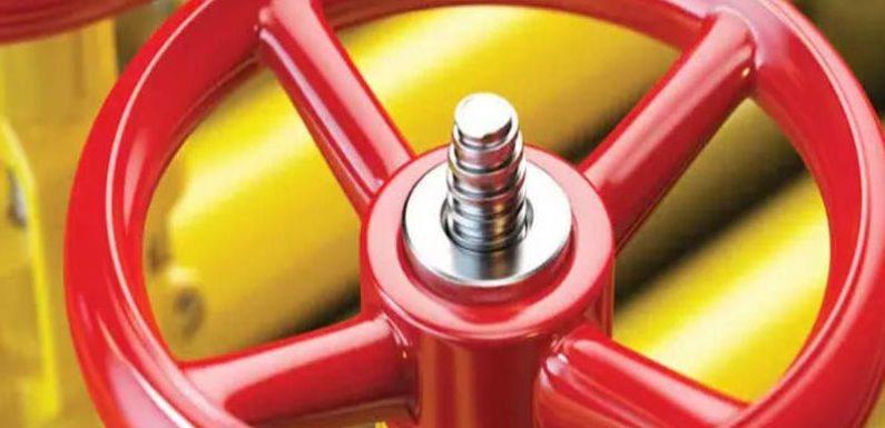 दिल्ली में सभी चिह्नित औद्योगिक इकाइयों तक उपलब्ध कराया गया स्वच्छ ईंधन