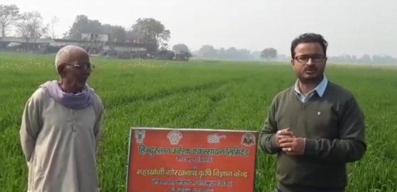 आर्गेनिक खेती में केंचुआ खाद लाभदायक- डॉ उपाध्याय