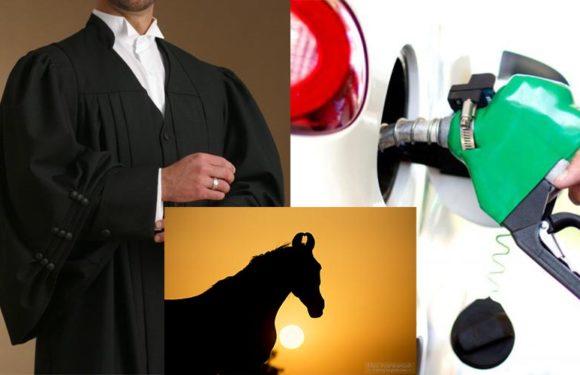 पेट्रोल के दामों से परेशान होकर वकील ने SSP से मांगी घोड़े से चलने की इजाजत, जानिए चिट्ठी में क्या लिखा