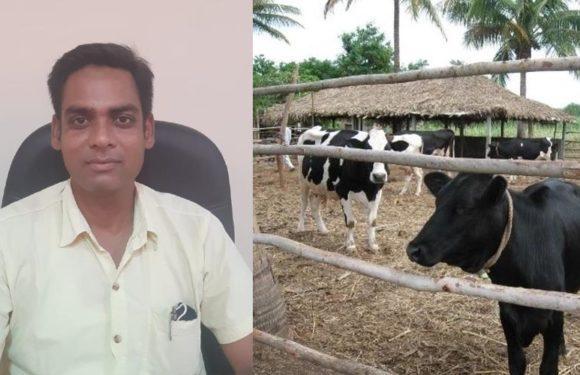 गर्मियों में पशुओं को अपच से बचाने के लिए करें ये उपाय : डॉ विवेक