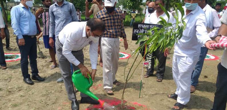 गोंडा-वृक्षारोपण महाअभियान के तहत जिले में 41 लाख 06 हजार 03 सौ पौधेे रोपित